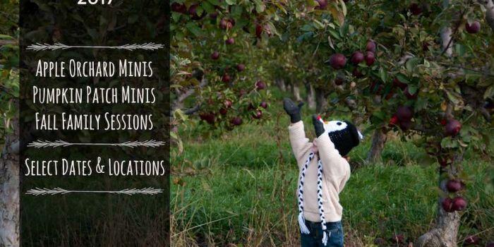 South Lyon Fall Mini Sessions, Northville Family Photographer