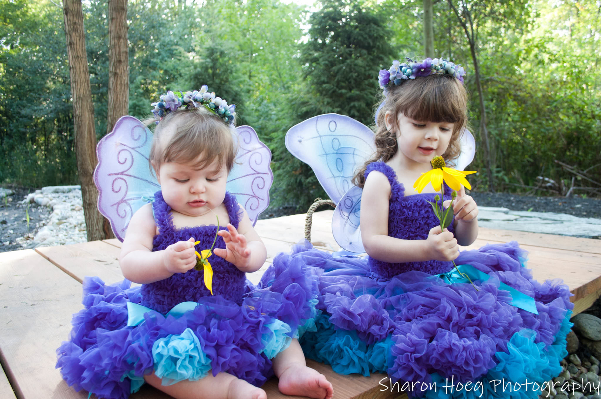 Fairy sisters holding yellow flowers, South Lyon Child Photographer