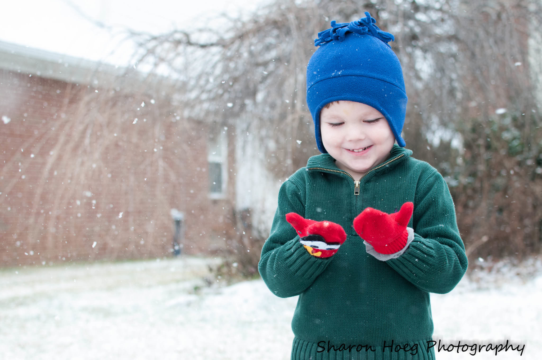 Boy with red mittens in the snow, Canton Child Photographer