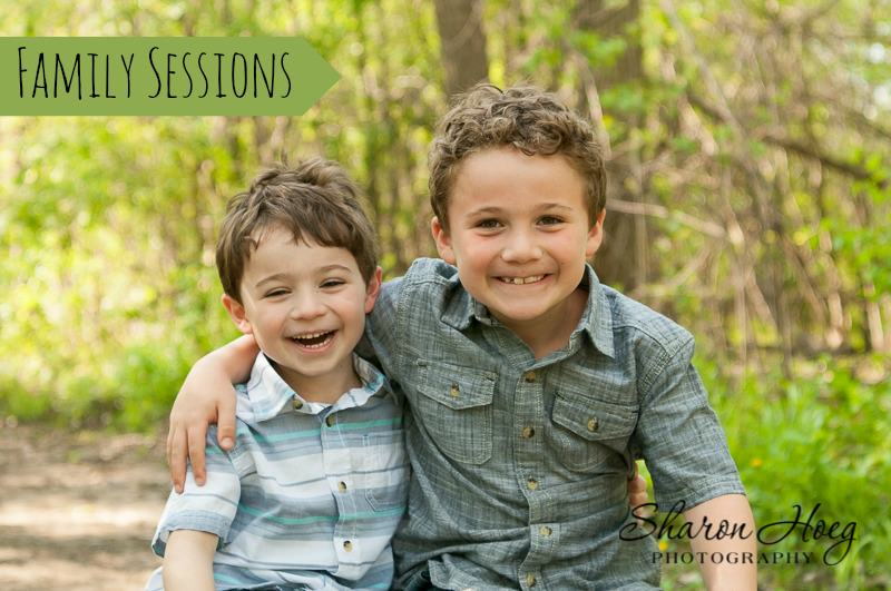 two young brothers hugging, Metro Detroit Family Photgrapher