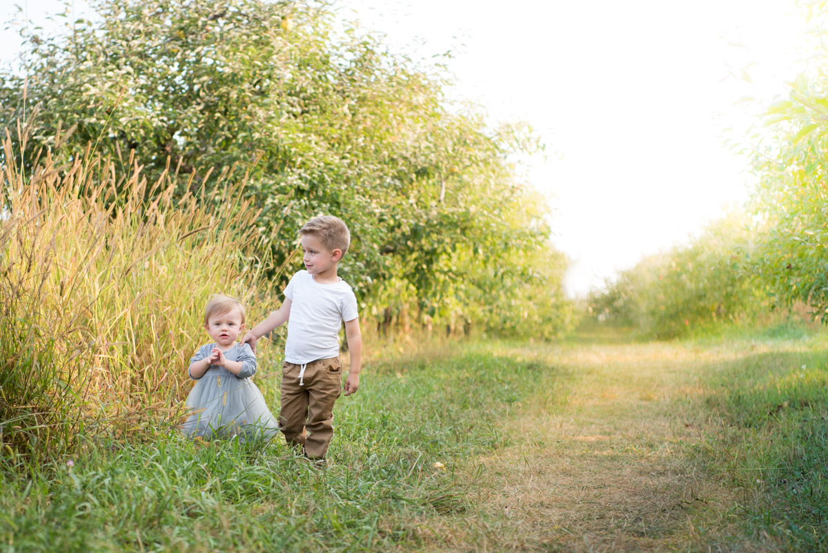brother and sister standing in a field of golden grass, Northville Child Photographer