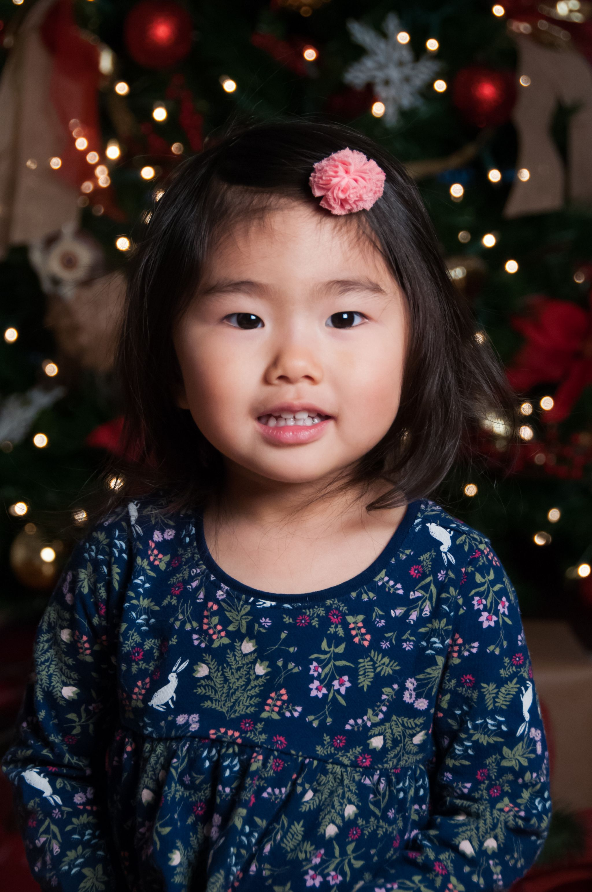 young girl in blue by Christmas tree, South Lyon Holiday Photographer, Christmas Mini Sessions