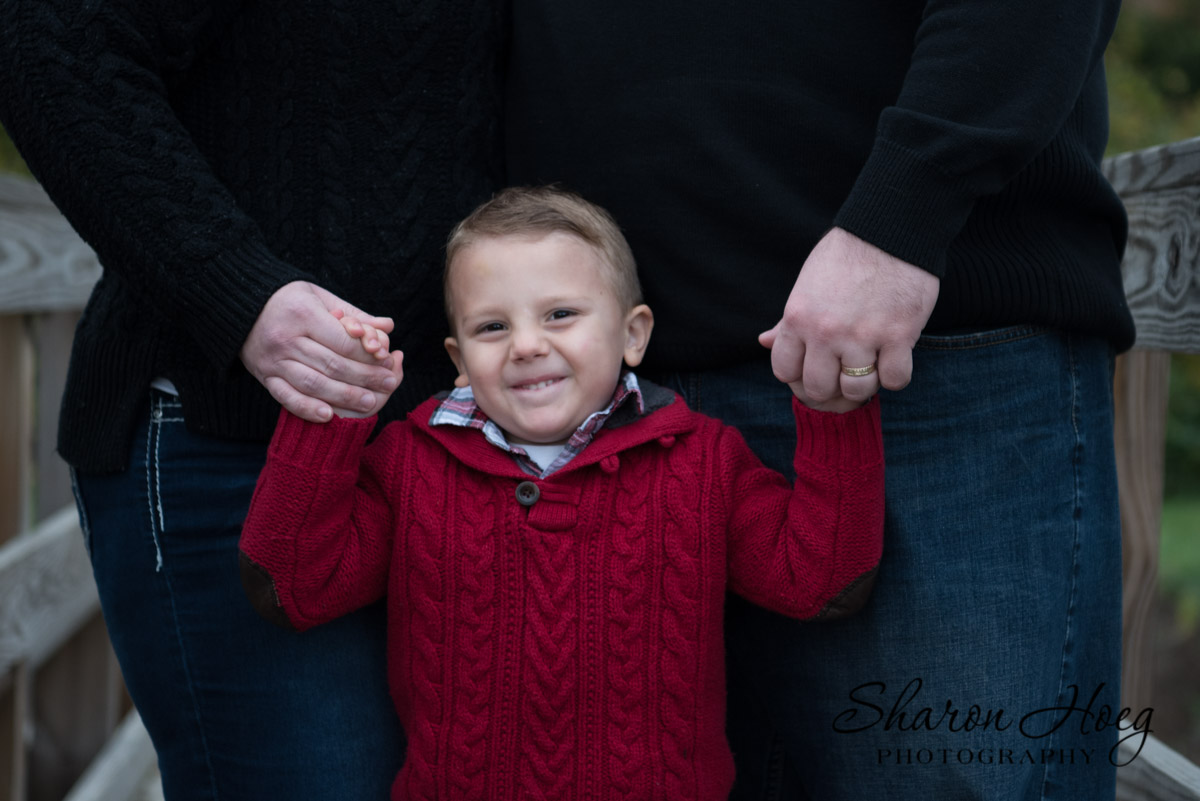 Young boy holding parent's hands, family photography