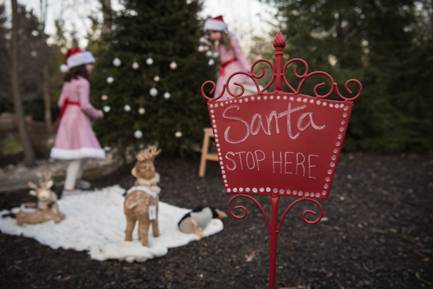 Santa Stop Here sign, South Lyon Photographer