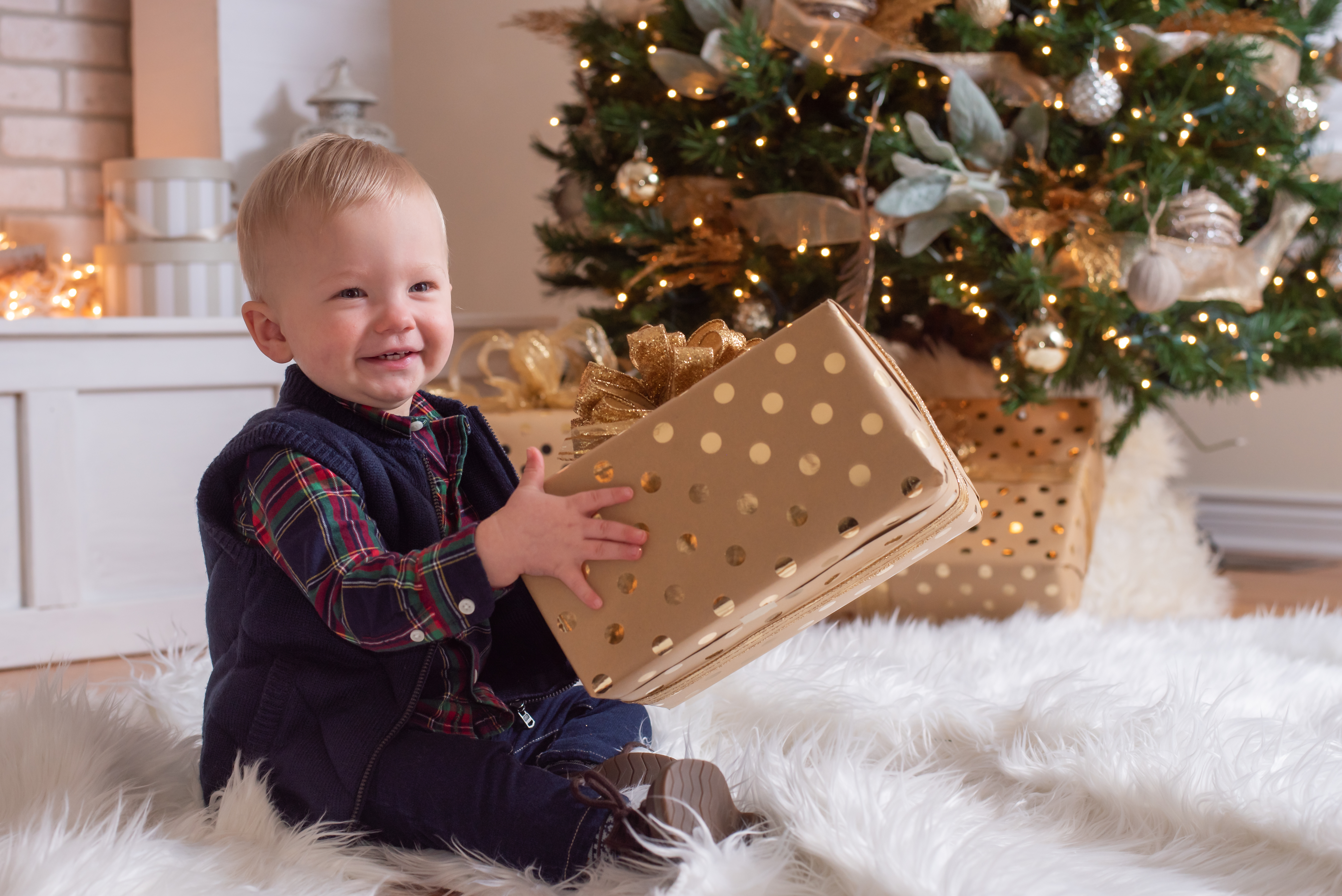 Northville Baby Photographer, Christmas Photography
